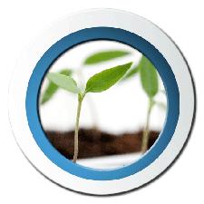 cat-Microgreens-led-bloom